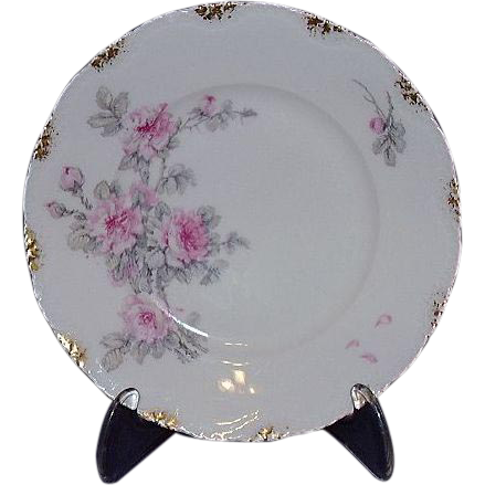 Theodore Haviland Limoges Bread & Butter Plate, France ~ Pretty Camellias