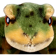 Rare Steiff 1960s Mohair Froggy Frog 2 IDs & He Croaks! - Red Tag Sale Item