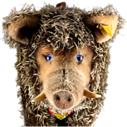 Ugly Sweet Early Steiff Wild Boar Wildschwein Blue Glass Eyes All ID Talks!