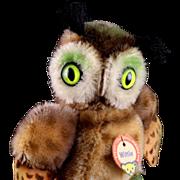 Tiny Steiff Mohair & Felt Wittie Owl Bird Gorgeous Coloring Magic Eyes ID