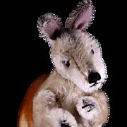 Big Brother Steiff Rare Standing MALE Kangoo Kangaroo Glass Eyes Poseable Arms - Red Tag Sale Item