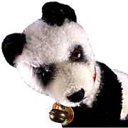 Rare Steiff Walking/Standing Panda Bear 2 IDs Only One Size & Only from 1955 to 1958!