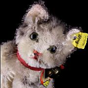 Tiny Sister Steiff Impish Seated Tabby Susi Cat Kitten All ID Near Mint