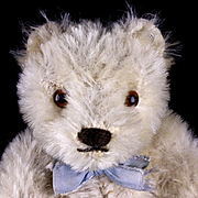 Little Brother RARE Steiff WHITE 5xJointed Original Teddy Bear ID