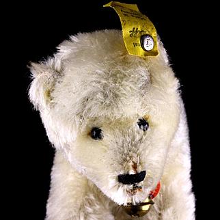 Baby Brother Steiff Polar Bear All ID