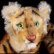 "Early Model Steiff Reclining Tiger Cub Wild Cat 2 IDs Magic Eyes and ""Roars!"""