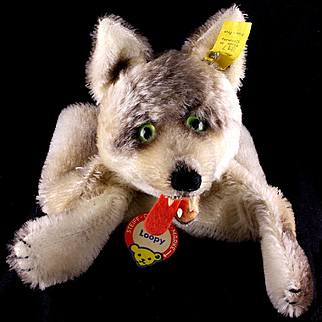 Rare Gorgeous Early Model Steiff Loopy Wolf Hand Puppet with Sharp Fangs All ID