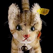 Rare Sweet Big Sister Steiff Brown Tabby Striped Tapsy Kitten Cat 2 IDs