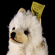 Rare Early Post WWII Tiny Steiff Wool Plush Seated Chow Puppy Dog 2 IDs