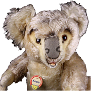 RARE! Gorgeous 5xJointed Largest Brother Steiff Koala (NOT) Bear ID