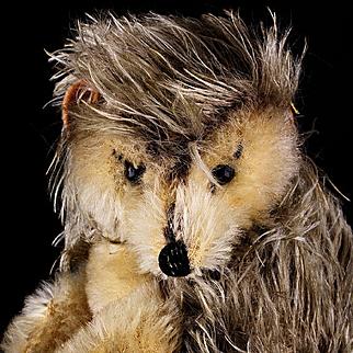 Early Steiff Begging Joggi Hedgehog All ID