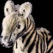 Sweet Smallest Steiff Mohair Young Zebra ID