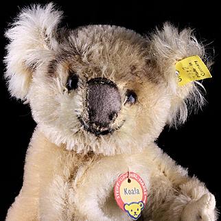 Rare Steiff Baby Brother Steiff Koala (NOT!) Bear All ID Gorgeous Coloring