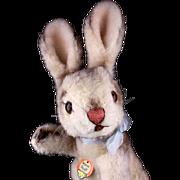 Little Sister Rare Steiff Dralon Hase Rabbit Bunny ID