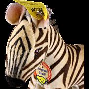 Rare Steiff Baby Brother Velveteen Zebra All ID