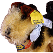 Tiny Brother Early Post WWII Model Steiff Terry Airedale Terrier Puppy Dog All ID