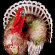 Rare Colorful Mohair and Felt Little Brother Steiff Tucky Turkey Bird 2 1/2 IDs UGLY!