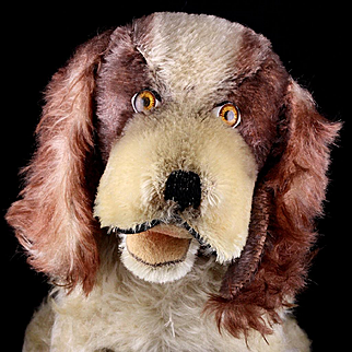 Rare Steiff Seated Brown & White Cockie Cocker Spaniel Puppy Dog ID 1957 Only