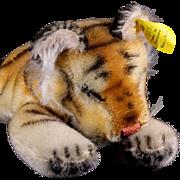 Little Brother Rare Steiff Sleeping Floppy Tiger 1956-1958 All ID