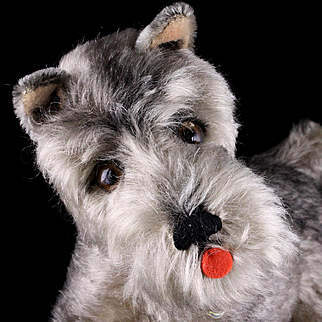 Next to Largest Sister Steiff Puppy Dog Tessie Schnauzer ID Gorgeous Coloring BARKS!