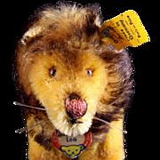 Teeny Tiny Steiff 1960s Leo Lion Miniature King of the Jungle All ID