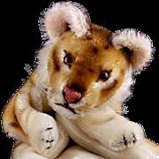 Rare Gorgeous Steiff Mohair Lion Cub Jungloewe Hand Puppet ID