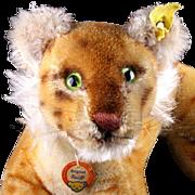 Rare 1950s Steiff Little Brother Reclining Lion Cub Wild Cat All ID MAGIC EYES