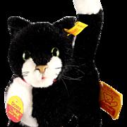 Gorgeous Near Mint Black & White Steiff Tuxedo Cat Kitten Dossy All ID & Care Booklet