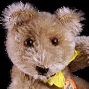 Early Steiff 5xJointed Little Brother Caramel Original Teddy Bear ID