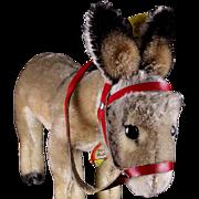 Earliest Model Sweet Little Mohair Brother Steiff 1950s Donkey Esel All ID