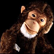 First Post WWII Model Steiff 5xJointed 35 CM Jocko Chimpanzee (NOT MONKEY) 2 IDs plus US-ZONE Flag