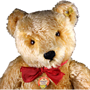 Gorgeous Large! Steiff 5xJointed Gold Original Teddy Bear All ID PLUS Foot Pads Signed by Steiff Family