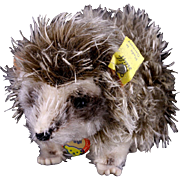 Rare Steiff Early '60s Walking Joggi Hedgehog All ID