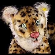 Rare (not so) Little Brother Steiff Reclining Leopard Wild Cat 2 IDs Magic Eyes!