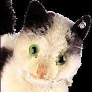 Baby Sister Steiff Gussy White and Black Cat Kitten Glass Eyes ID