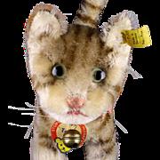 Largest Steiff Rare Tapsy Cat Kitten Sister All ID