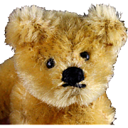 Early Post WWII Tiny Steiff 5xJointed Gold Blond Original Teddy Bear What an Expression! - Red Tag Sale Item