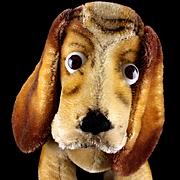 Rare Steiff Big Brother Seated Basset Hound Dog Puppy ID