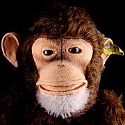 Handsome Big Brother Steiff Jocko Chimpanzee (NOT Monkey!) 2 IDs HE TALKS!