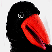 Rare Steiff Hucky Raven Bird Hand Puppet 1 1/2 IDs TALKS!