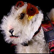 "Tiny Sparky Fox Terrier Puppy Dog (AKA ""Foxy"") for Ginny Doll Jacket Leash Steiff IDs 1954 & 1955 Only"