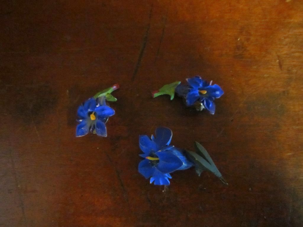 Blue Gentian Flower Brooch and Earrings