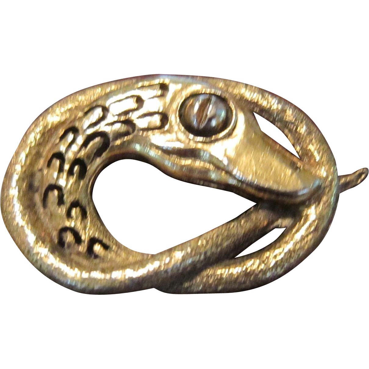 Sweet Baby Snake Polished Brass Brooch