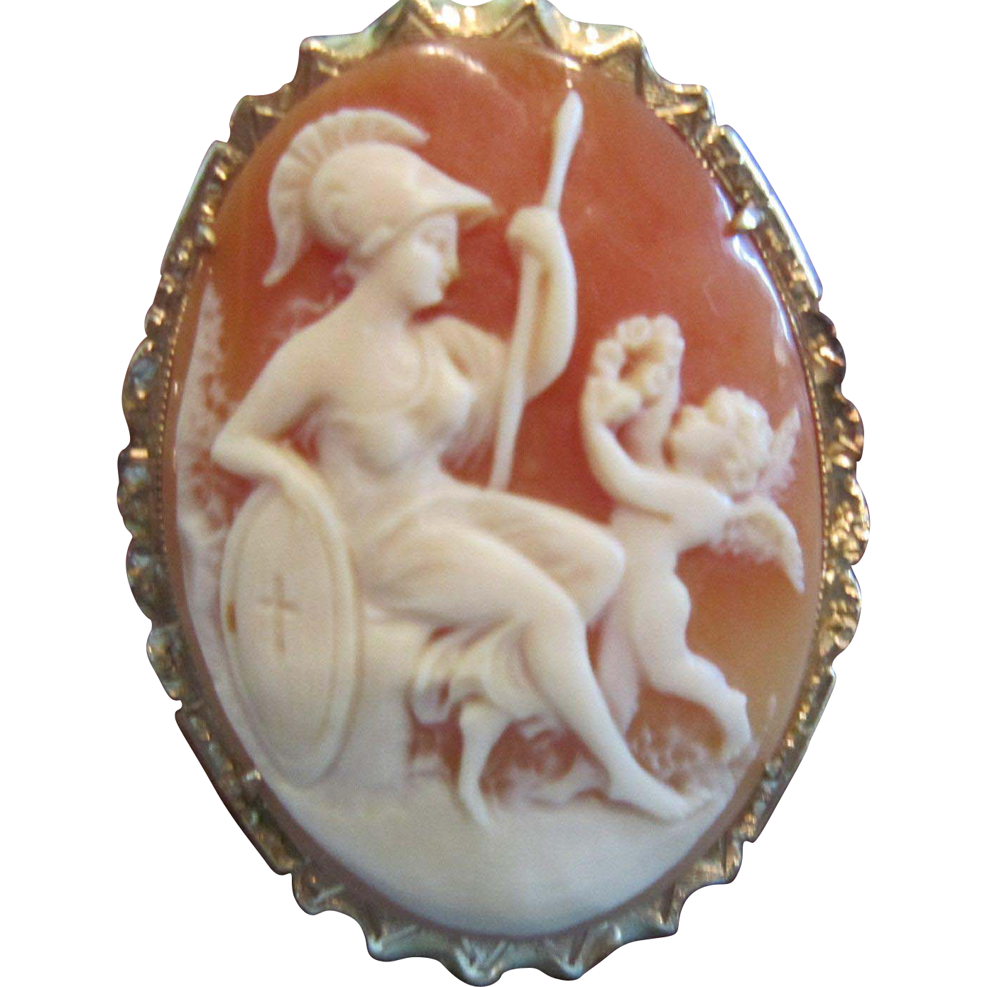 A Shell Cameo of Athena, Goddess of War