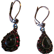 European Lever Back Earrings with Garnets