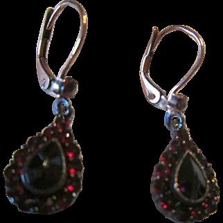 European Lever Back Earrings with Garnets