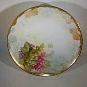 VINTAGE 8 1/2 Inch Aabsburg Austria BT Crown Painted Plate