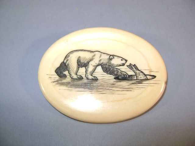 VINTAGE  Walrus Tusk Cross-Section  Scrimshaw Brooch