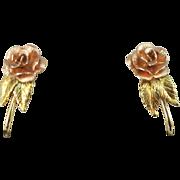 VINTAGE Black Hill Gold 10K  (tested) Screw Earrings