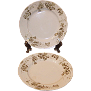 "SET of 2:  Antique Dresden Hopfen 6 7/8"" Dessert Plates by Alfred Meakin of England"